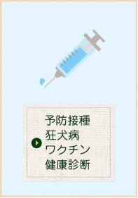 予防接種狂犬病ワクチン健康診断